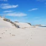 316 Sandhills Cape Range NP
